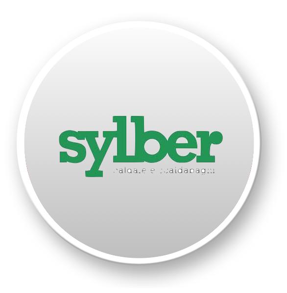 Caldaie Sylber