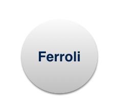 Manutenzioni e Assistenza Caldaie Ferroli