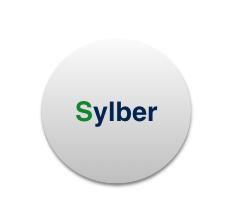 Manutenzioni e Assistenza Caldaie Sylber