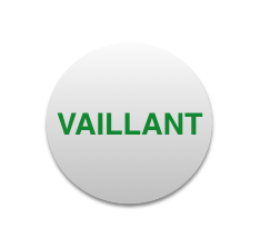 Manutenzioni e Assistenza Caldaie Vaillant